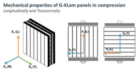 Mechanical testing of bamboo G-XLam panels in compression.jpg