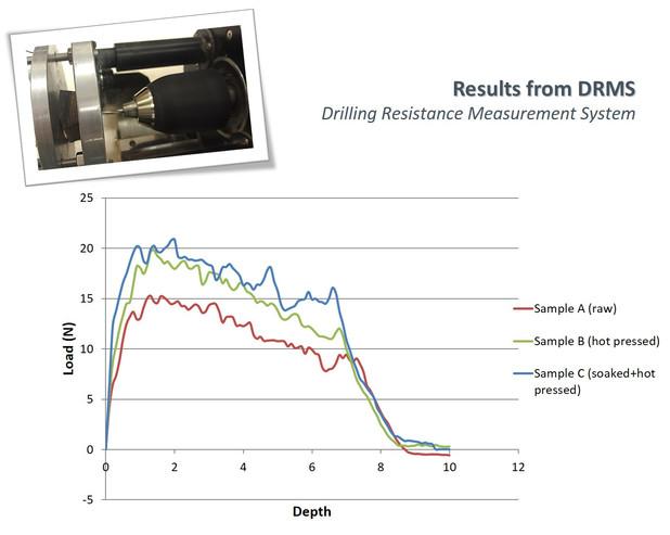 Bamboo-Guadua drilling resistance tests.jpg