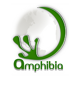 Amphibia Group. Bamboo, bio-based, architecture and structural engineering