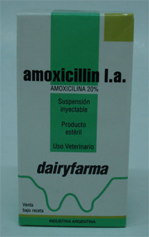 Amocillin L:A.