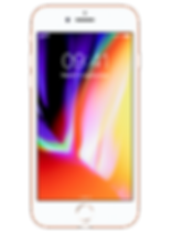 IPHONE POUR WIX.png