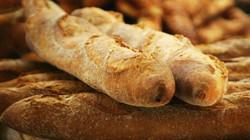 vers & verschillend brood