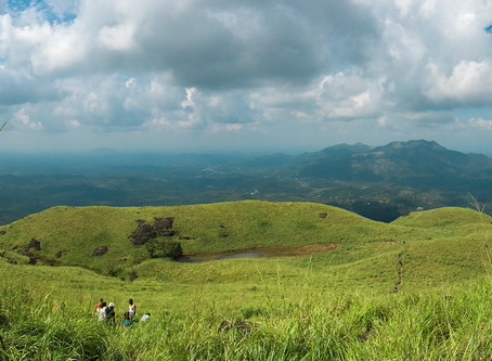 Top 10 Adventurous Things to Do in Wayanad