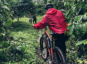 cycling-wayanad-icon.jpg