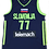 Thumbnail: Youth Luka Doncic Slovenia Jersey