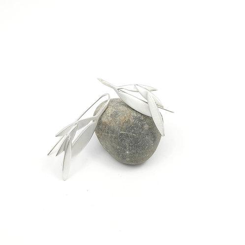 Boucles d'oreilles Niaouli - Argent 925