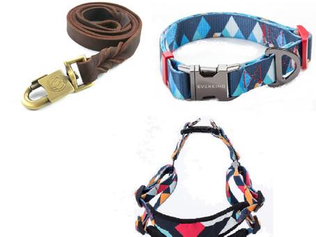 Halsband of tuig?