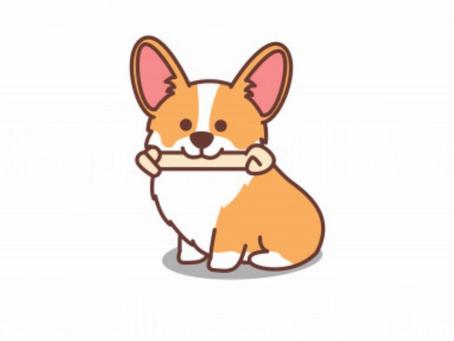 Puppy/groene hondencursus