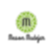 Logo meson.png