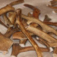 Купить рог северного оленя для собаки