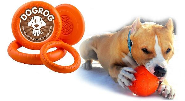 Игрушки для собак на каждый день и для дрессировки. Заказывайте на dogrog.ru!
