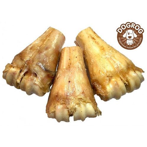 Голеностопный сустав лося сушёный, 1 шт. (10 см)