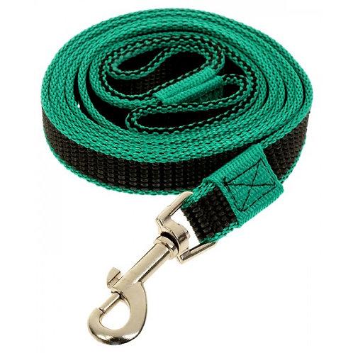 Поводок капроновый для собак, чёрно-зелёный, 25*5000мм