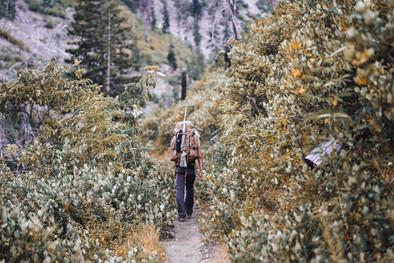 A Bear Hunt 2.jpg