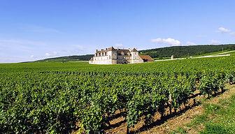 a2-cote-viticole.jpg
