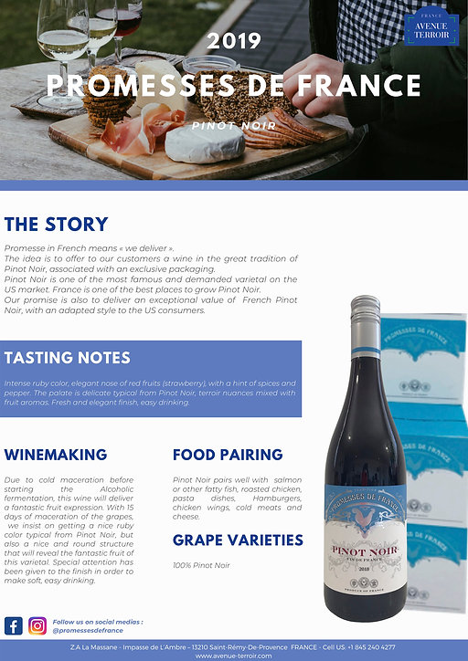 Tech Sheet PDF Pinot Noir 2019.jpg