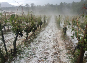 Terrible Hailstorm in Languedoc on August 17th