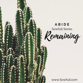 Abide: Remaining