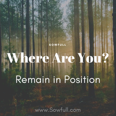 Where Are You? Remain in Position
