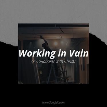 Working in Vain or Co-Laborer?
