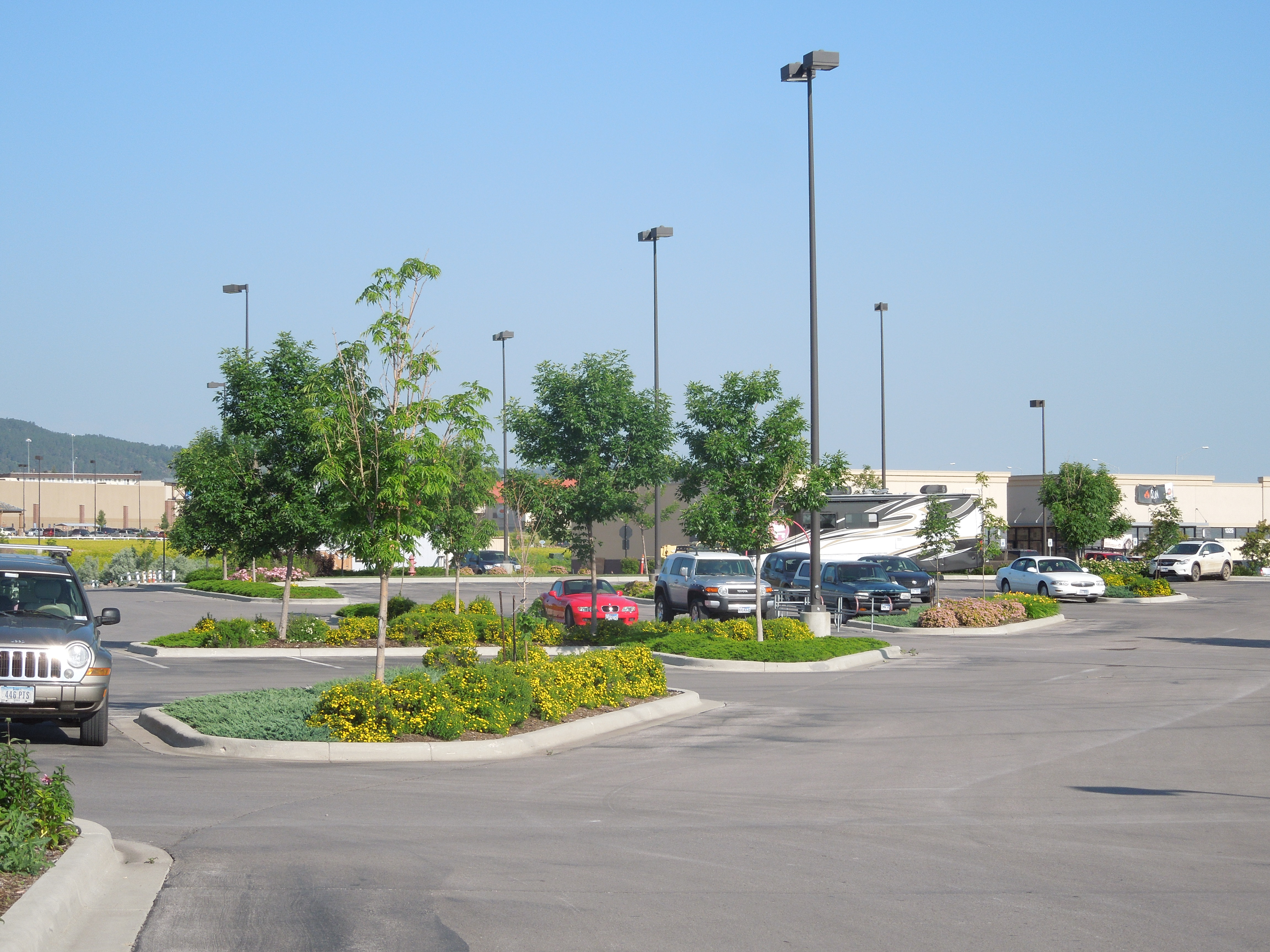 Scheels Store Expansion