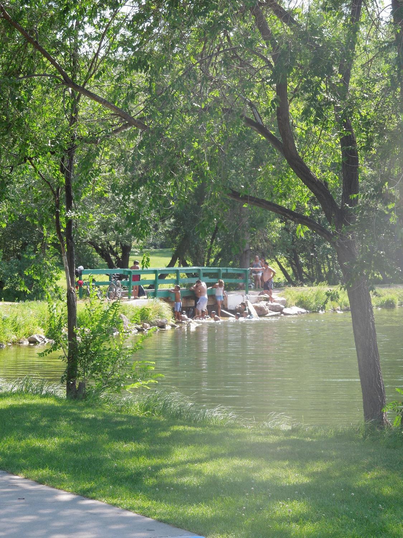 Memorial Park Irrigation Study