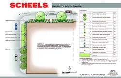 Scheels Schematic Planting