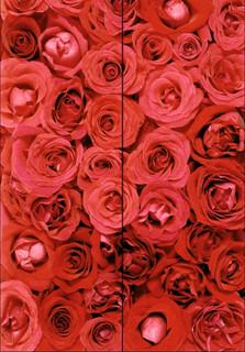 20010.jpg