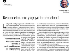 Reconocimiento y apoyo internacional