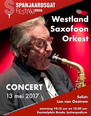 WSO Spanjaardgat Festival 2017.png