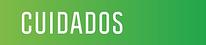 CUIDADOS TIT.png