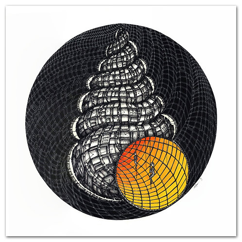1st SHELL, m.a. Humphrey´s Wentletrap,Print