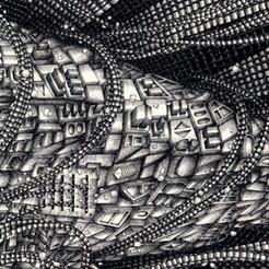 001: BLACK TIP REEF SHARK