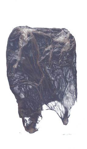 2018_UnderwaterTrash-66.png