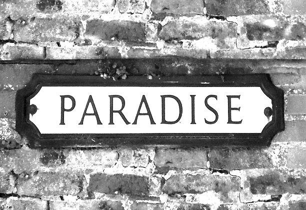 Paradise by Emma Darcy