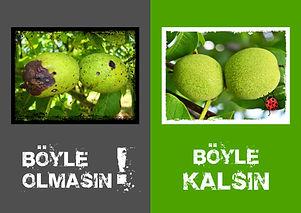 BÖYLE OLMASIN-01.jpg