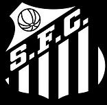 santos-logo-escudo-1.png