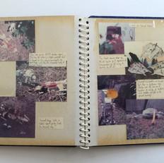 Photo story Page 10
