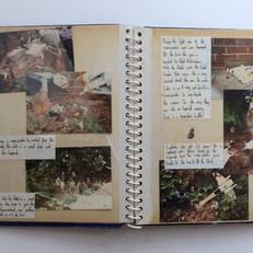 Photo story Page 3
