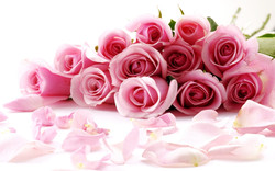 Valentines-Day-Roses-wallpaper