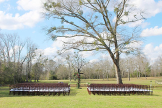 Ceremony Tree Auburn AL Wedding Venue
