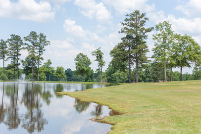 Beautiful Pond & Fountain
