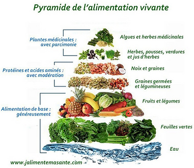 Pyramide alimentation vivante.png