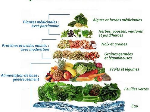Atelier Alimentation vivante - Samedi 11 juillet 2020