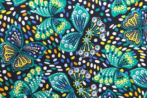 Adultes - Papillon de nuit