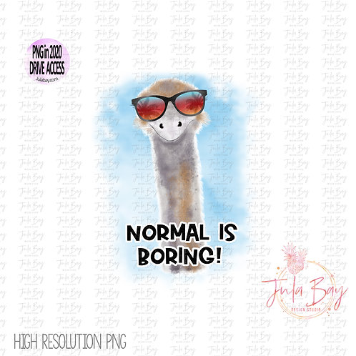 Normal is Boring Funny watercolor Ostrich Emu Clipart PNG for Sublimation