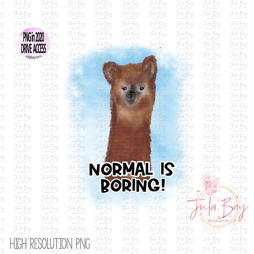 Normal is Boring Funny watercolor Alpaca Clipart PNG for Sublimation