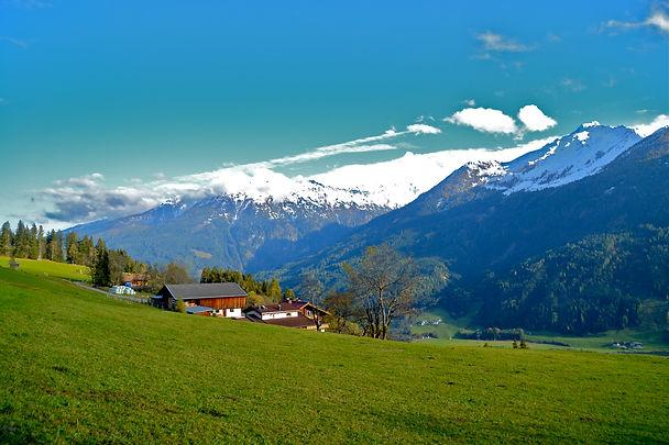 Flora & Fauna im Wandergebiet Hohe Tauern