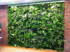 Grundys Plantscaping|Greenspace Blog
