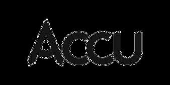 Accu.png